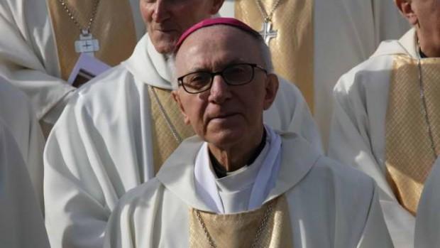 Mgr Fortunato Baldelli nonce apostolique Lourdes novembre 2008